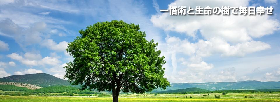 一悟術と生命の樹で毎日幸せ